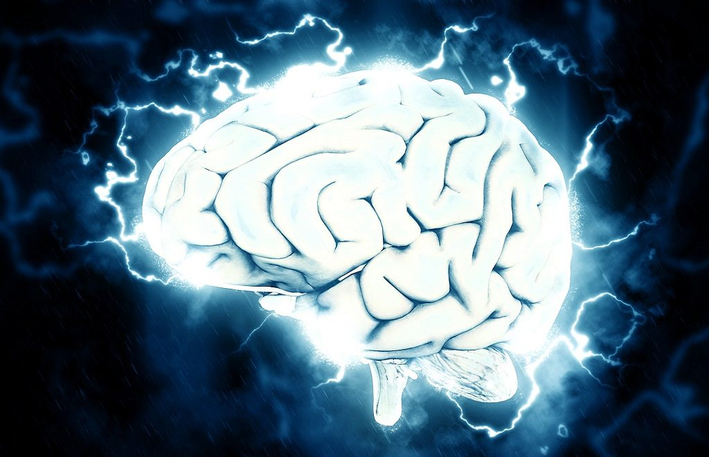 7 Facts You Don't Know about Your Brain