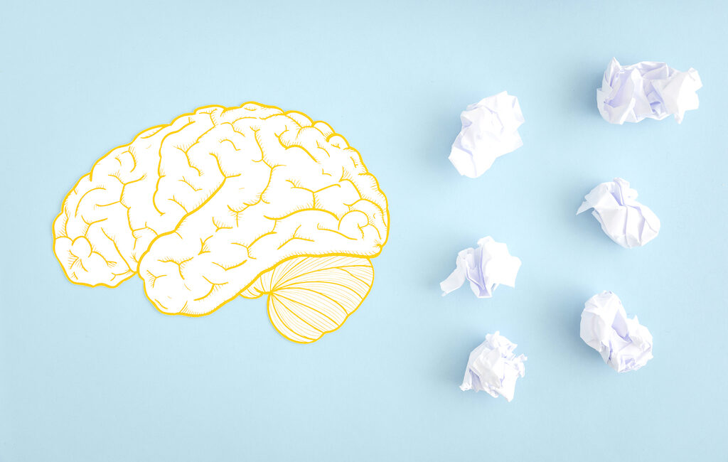 What Part Of Your Brain Handles Retention And Memory?