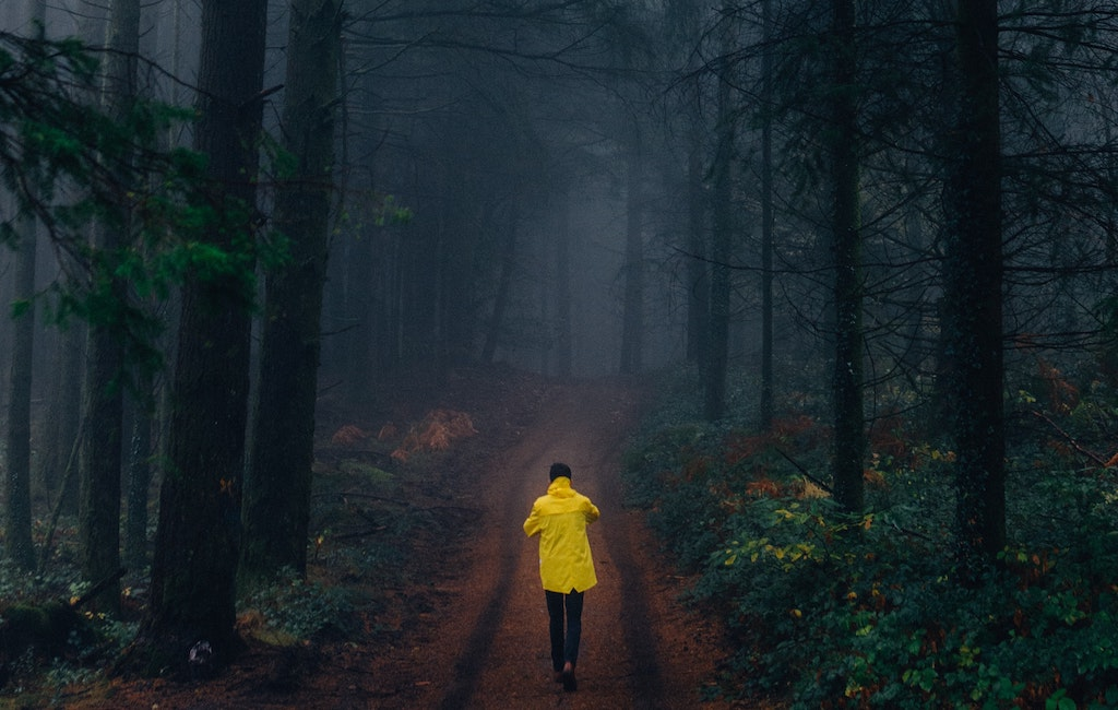 Three Reasons to Take a Walk in the Woods for Brain Health
