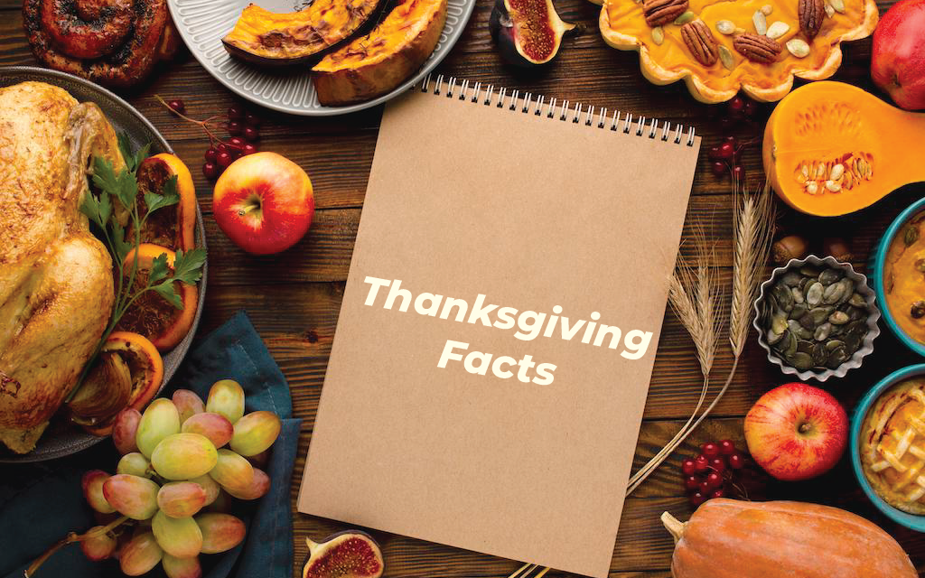 10 Fun Facts About Thanksgiving
