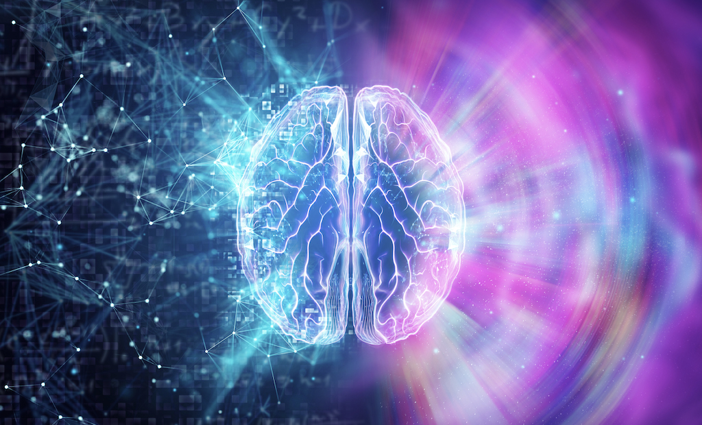 3 Important Neuroscience Milestone Discoveries Of 2020
